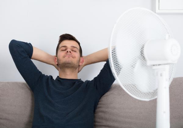 Cuál es el mejor ventilador para el hogar
